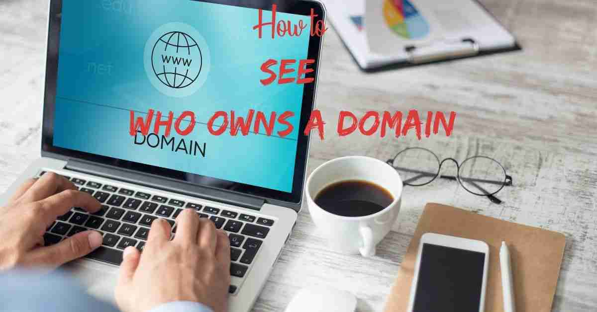 How to See Who Owns a Domain